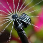 Micro Irrigadores